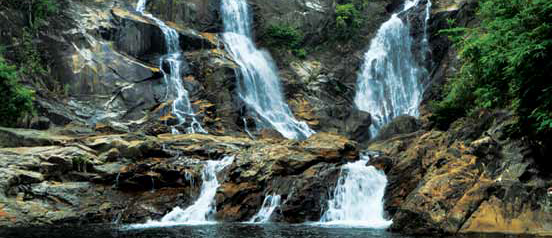 Lata Tembakah Recreational Forest and Waterfall